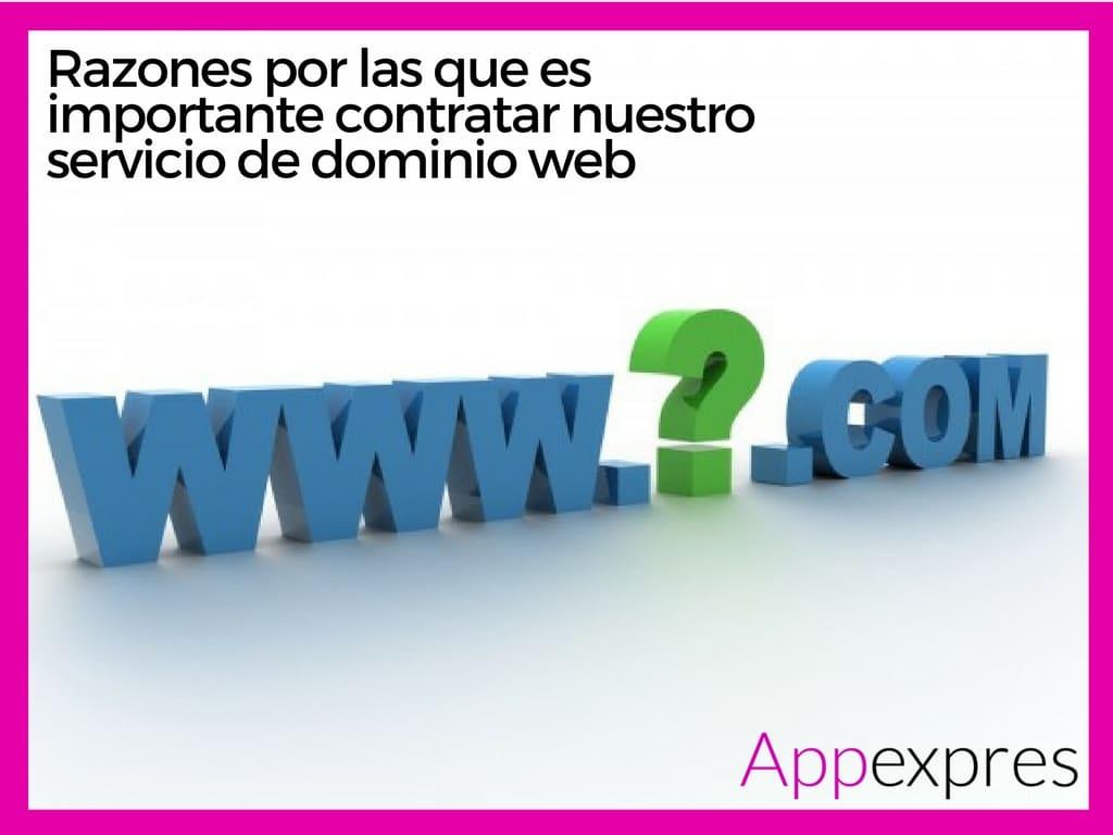 Razones por las que es importante contratar nuestro servicio de dominio web
